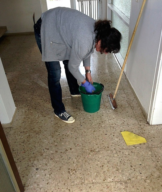 cleaning-lady (3)
