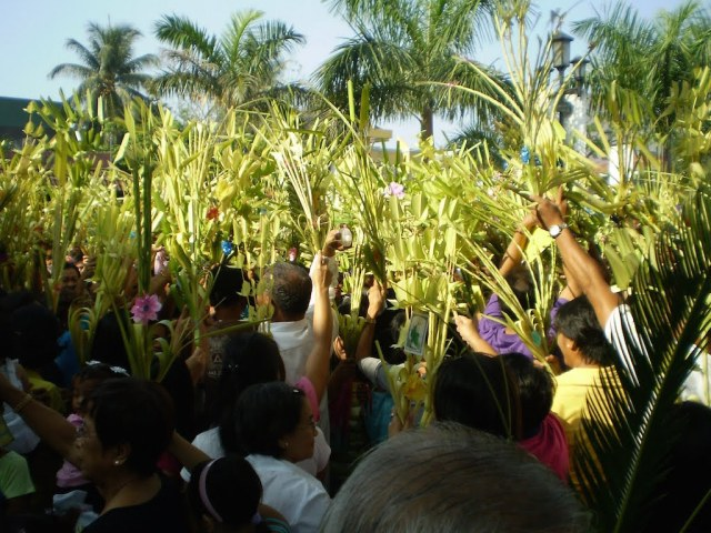 palm-sunday13